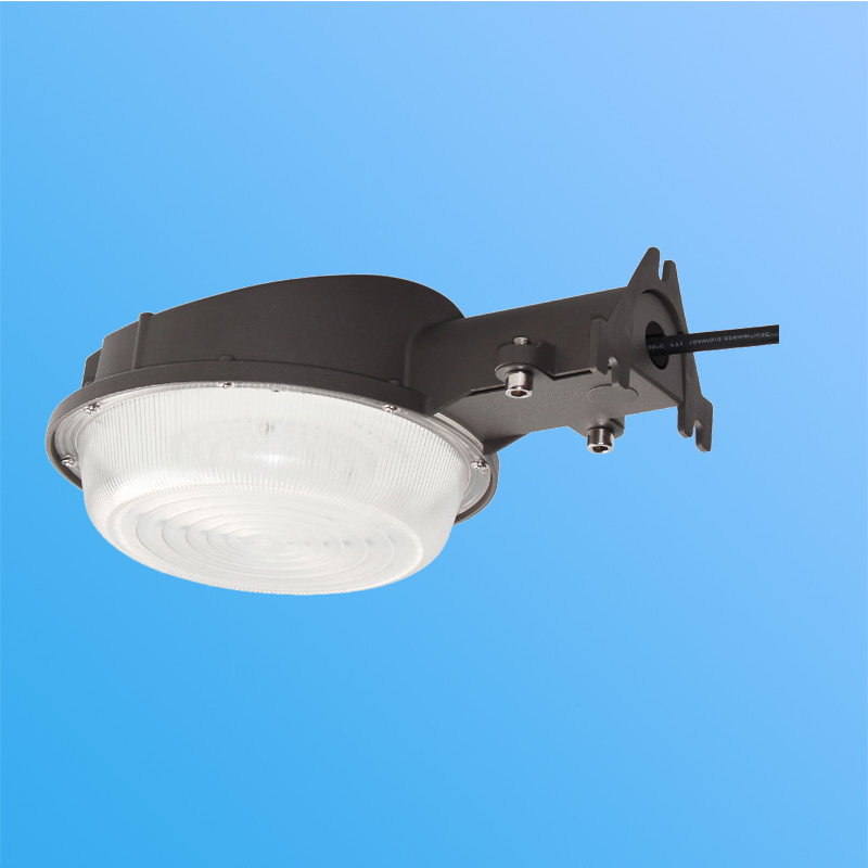 25W LED Yard Light